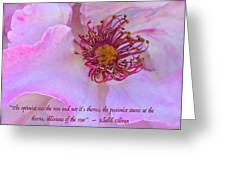 The Optimist Sees The Rose Greeting Card