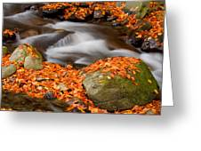 The Orange Stream Greeting Card
