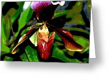 The Orchid Room Greeting Card