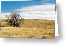 The Other Colorado Greeting Card