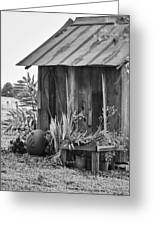 The Outhouse Bw Greeting Card