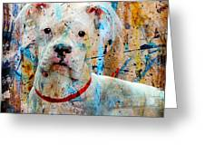 The Painter's Dog Greeting Card