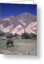 The Painters Palette Jujuy Argentina Greeting Card