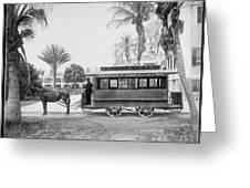 The Palm Beach Trolley Greeting Card