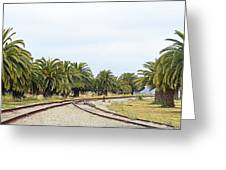The Palms By The Tracks Greeting Card