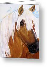 The Palomino Greeting Card