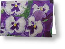The Pansy Brothers Greeting Card