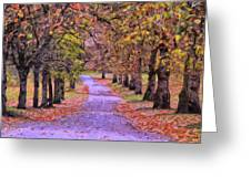The Park In Autumn Greeting Card