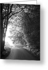 The Path Ahead Greeting Card by Andrew Soundarajan