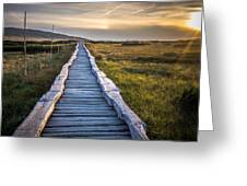 The Path In The Hills Greeting Card