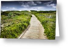 The Path Greeting Card by John Early