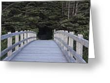 The Path The Lies Ahead Greeting Card