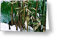 The Patience Of Bamboo Greeting Card