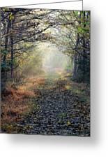 The Paulinskill Trail By James Figielski Greeting Card