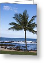 The Perfect Palm Tree - Sunset Beach Oahu Hawaii Greeting Card