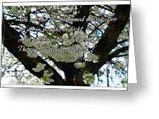 The Perfumed Cherry Tree 2 Greeting Card