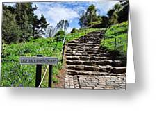 The Pilgrims' Steps Greeting Card