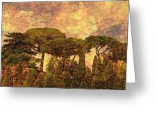 The Pines Of Rome Greeting Card