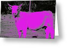the Pink Cow Greeting Card