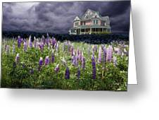 The Pink House In The Lupine Greeting Card