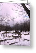 The Pink Winter Light On The Mountain Top Greeting Card