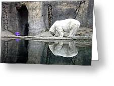 The Polar Bear And The Purple Chair Greeting Card