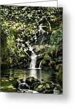 The Pond And The Forest Waterfall Greeting Card