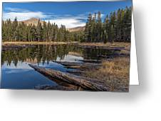The Pond At Dana Meadow Greeting Card