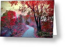 The Pondering Path Greeting Card