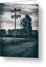 The Power Lines  Greeting Card