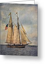 The Pride Of Baltimore II Greeting Card