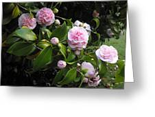 The Promise Of Spring Greeting Card