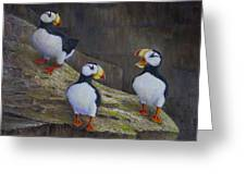 The Puffin Report Greeting Card