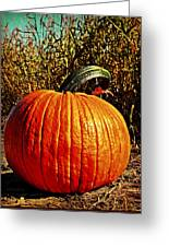The Pumpkin Greeting Card