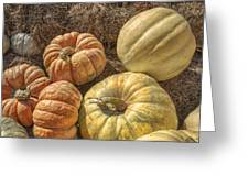 The Pumpkins Of Autumn Greeting Card