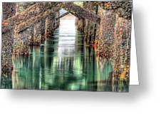 The Quiet Of Green Greeting Card by JC Findley
