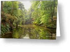 The Quiet River Greeting Card