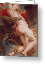 The Rape Of Ganymede Greeting Card by Rubens