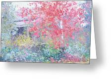 The Red Japanese Maple Tree Greeting Card