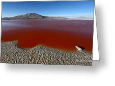 The Red Lagoon Greeting Card