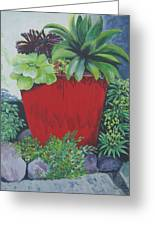 The Red Pot Greeting Card