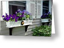 The Right Plant Boxes Greeting Card
