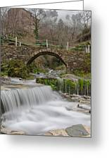 The River And The Village Greeting Card