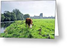 The River Suir County Tipperary Ireland In Front Of Ruins Of Mediaeval Athassel Augustinian Priory Greeting Card