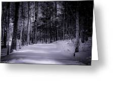 The Road Less Traveled Greeting Card by Paul Herrmann