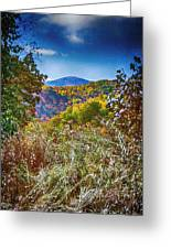 The Road To Cataloochee On A Frosty Fall Morning Greeting Card