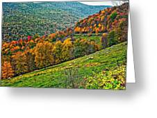 The Road To Glady Wv Greeting Card