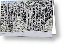 The Road To Petoskey Greeting Card