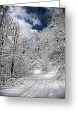 The Road To Winter Wonderland Greeting Card
