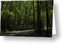 The Roads Of Alabama Greeting Card